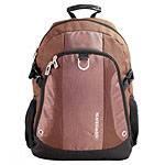 Рюкзак Swisswin SWB0011 brown