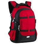 Рюкзак Swisswin SW8350N red